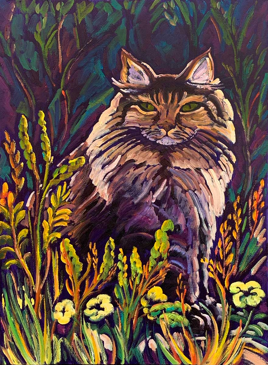 The Maine Coon in the Meadow