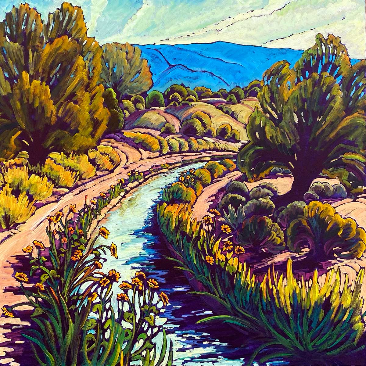 Summer South Valley Acequia