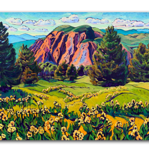 High Mountain Meadow with Brazos Cliffs